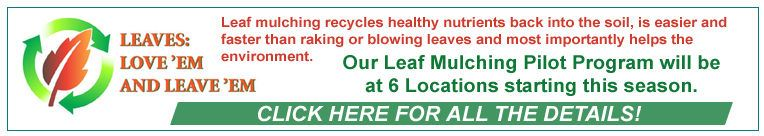 Leaf Mulching Pilot Program banner image with start-up citizen information